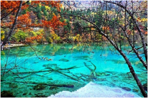 Hồ Ngũ Hoa - Trung Quốc