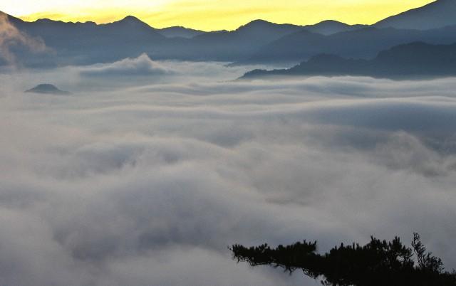Ghé thăm ngọn núi Alishan ở Đài Loan