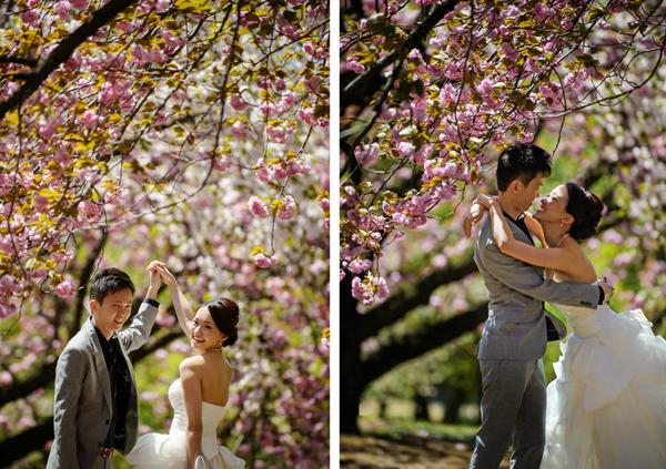 Ảnh cưới lung linh dưới tán anh đào tại Nhật Bản