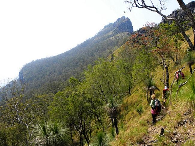 Khám phá thiên nhiên ở công viên quốc gia Main Range