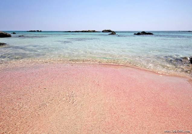 Bãi biển Pink