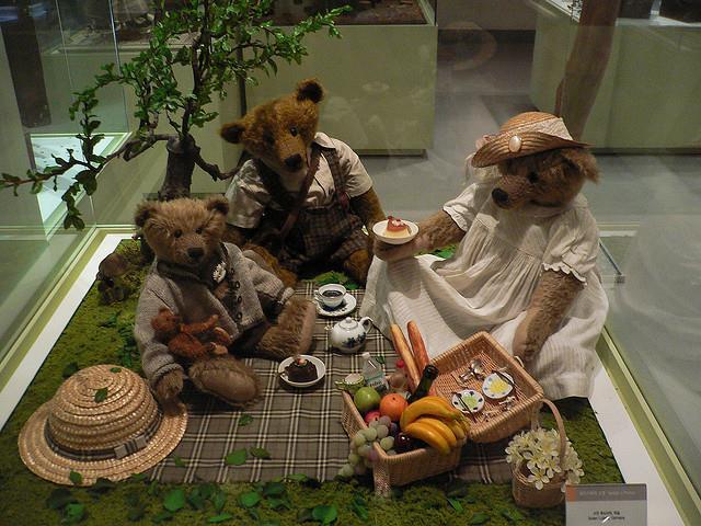 Viện bảo tàng gấu bông Teddy