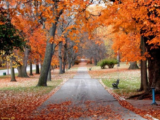 jeju mùa thu