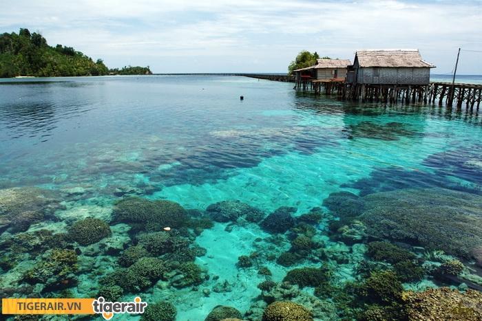 Sulawesi2