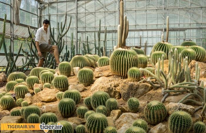 Botanic Garden chiang mai