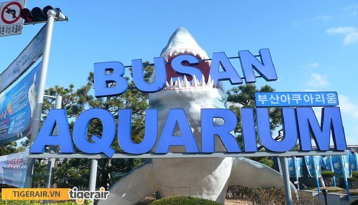 Thủy cung Busan