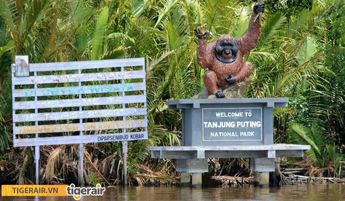 vườn quốc gia Tanjung Puting