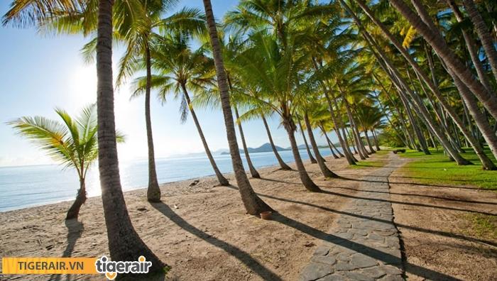 Bãi biển Palm Cove